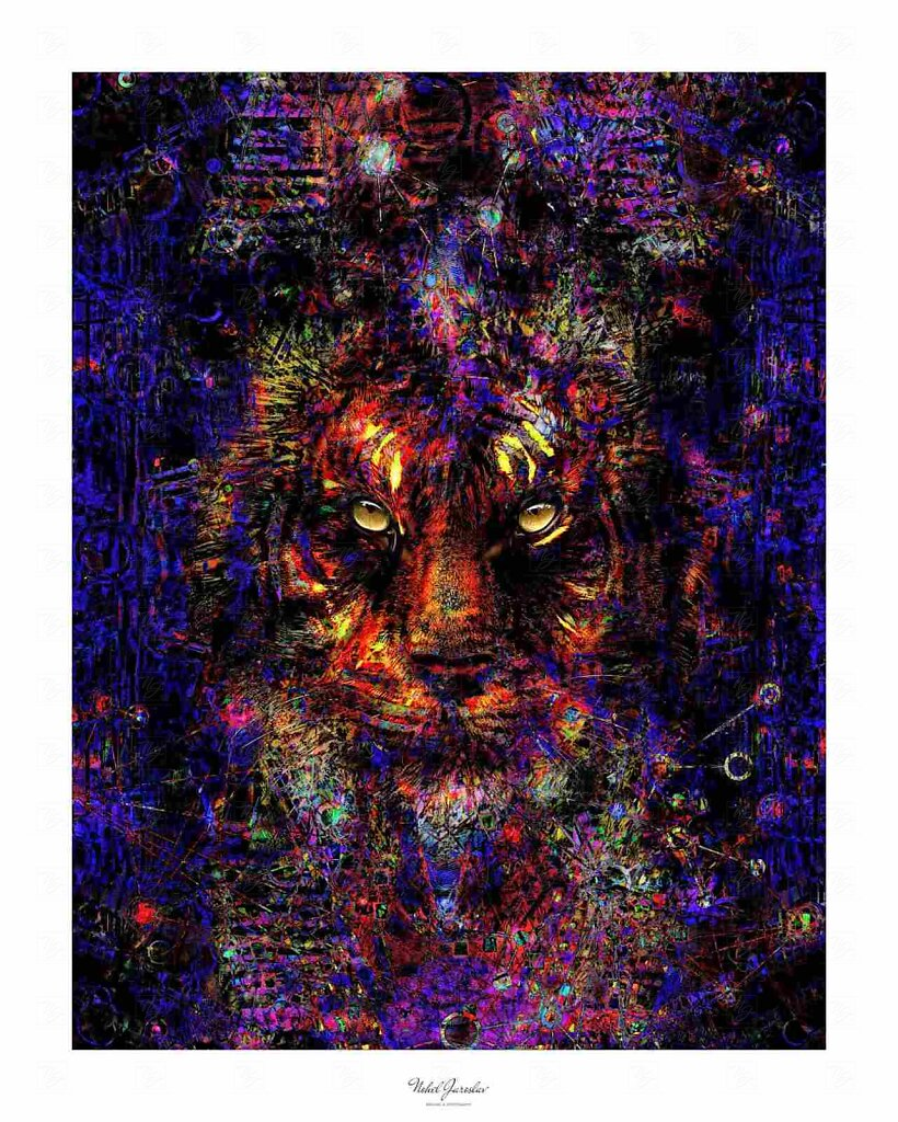 tigr7.jpg